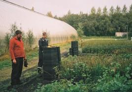Work at the tree nursery at Tumastaðir (Danny Lash)