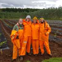 Tree planting team at Tumastaðir Forestry Station (Michelle Pröstler)